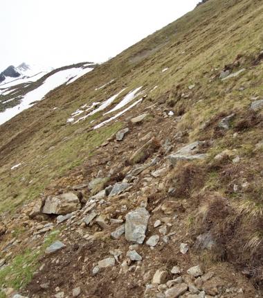 Durch den enormen Schneedruck wurde der Weg speziell in den steilen Grashängen auf längeren STrecken vollkommen zurstört!